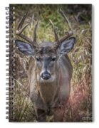 The One You Look For Spiral Notebook