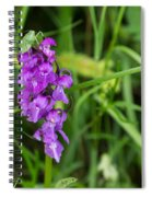 The Orchid And The Grasshopper  Spiral Notebook
