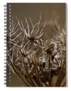 The Other Shades Of Fall Spiral Notebook