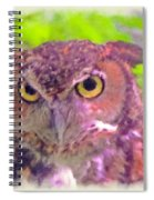 The Owl... Spiral Notebook