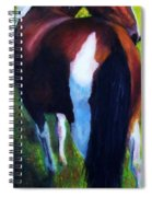 The Paint Spiral Notebook