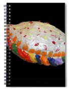 The Painted Calzone Spiral Notebook
