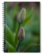 The Pairing Spiral Notebook