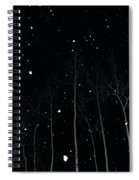 The Park In Winter Spiral Notebook
