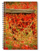 The Passion Wall Spiral Notebook