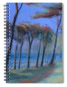 The Path At Lands End Spiral Notebook