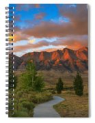 The Path To Beauty Spiral Notebook