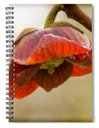 The Paw Paw Bloom Spiral Notebook