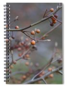 The Peaceful Fruit Of Nature Spiral Notebook