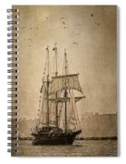 The Peacemaker Spiral Notebook