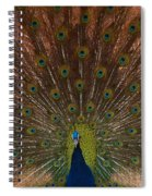 The Peacock 2 Spiral Notebook