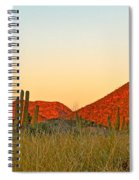 The Peak And Cardon Cacti In The Sunset In San Carlos-sonora Spiral Notebook