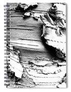 The Peeling Birch Spiral Notebook