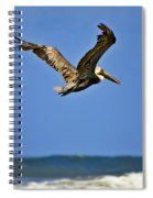 The Pelican And The Sea Spiral Notebook
