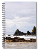 The Perfect Light Spiral Notebook
