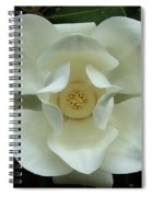 The Perfect Magnolia Bloom Spiral Notebook