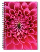 The Perfect One Spiral Notebook