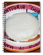 The Perogi Cheese Story Spiral Notebook
