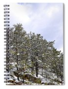 The Pines Spiral Notebook