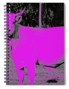 the Pink Cow Spiral Notebook