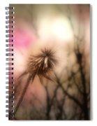 The Pink Light Spiral Notebook