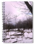 The Pink Winter Light On The Mountain Top Spiral Notebook