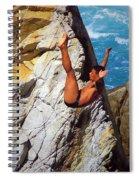 The Plunge   Spiral Notebook