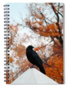 Crow Found The Perfect Pyramid Point Spiral Notebook