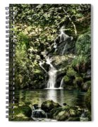 The Pond And The Forest Waterfall Spiral Notebook
