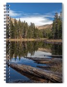 The Pond At Dana Meadow Spiral Notebook