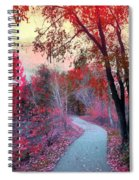 The Pondering Path Spiral Notebook