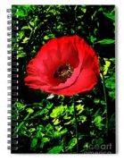The Poppy Spiral Notebook