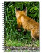 The Pounce Spiral Notebook