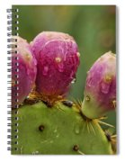 The Prickly Pear  Spiral Notebook