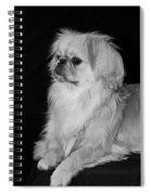 The Princess Spiral Notebook