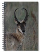 The Pronghorn 2 Dry Brushed Spiral Notebook