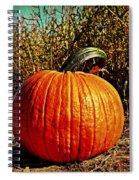 The Pumpkin Spiral Notebook