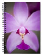 The Purple Orchid Spiral Notebook