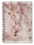 The Purr Of Autumn Spiral Notebook