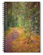 The Quiet Path Spiral Notebook