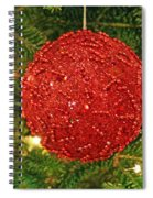 The Red Ball Spiral Notebook