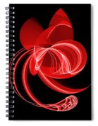 The Red Cat Spiral Notebook