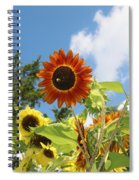 The Red Stand Out Spiral Notebook