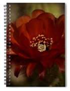 The Red Torch  Spiral Notebook