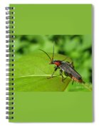 The Rednecked Bug- Close Up Spiral Notebook