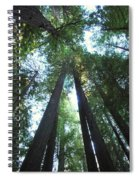 The Redwood Giants Spiral Notebook