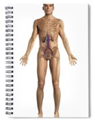 The Renal System Male Spiral Notebook