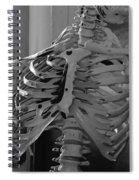 The Ribcage Spiral Notebook