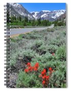 The Road Into Lundy Canyon Spiral Notebook