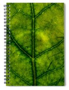 The Road Map Of Life Spiral Notebook